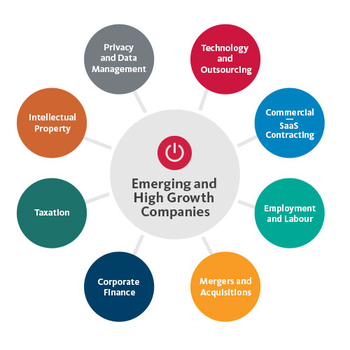 Emerging Companies Related Expertise
